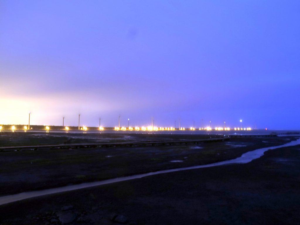 高美湿地夜